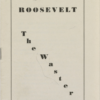 """Roosevelt the Waster"""