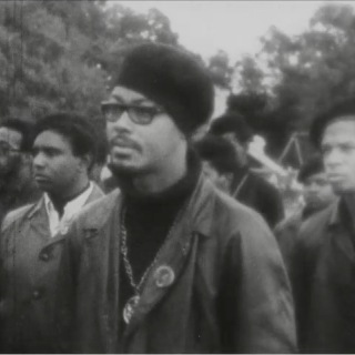 Investigation of the Black Panthers (video)